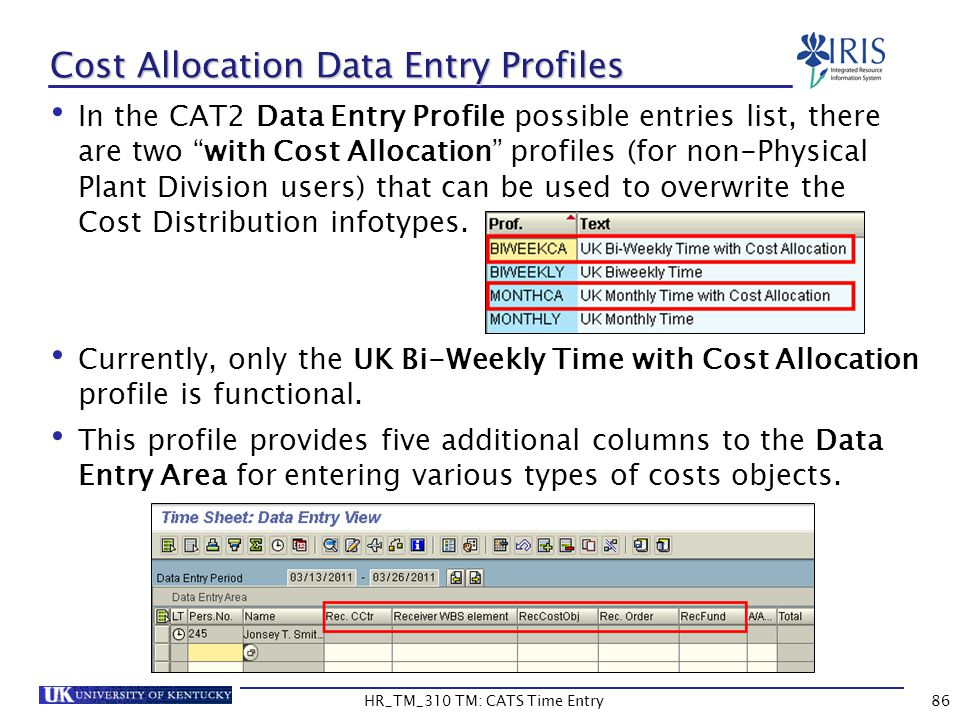 Cost Allocation Data Entry Profiles