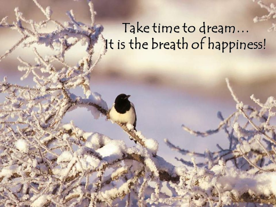 It is the breath of happiness!