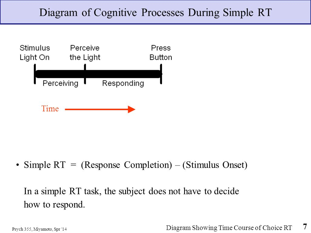 Diagram of Cognitive Processes During Simple RT