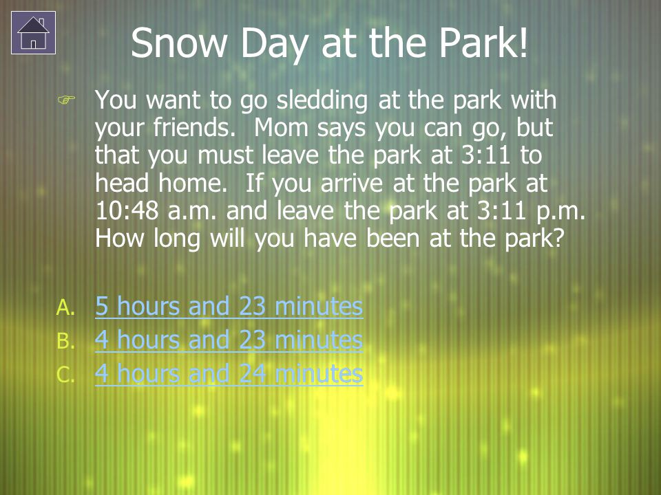 Snow Day at the Park!