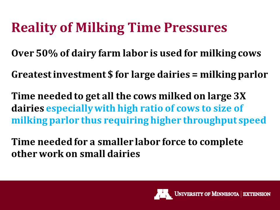 Reality of Milking Time Pressures