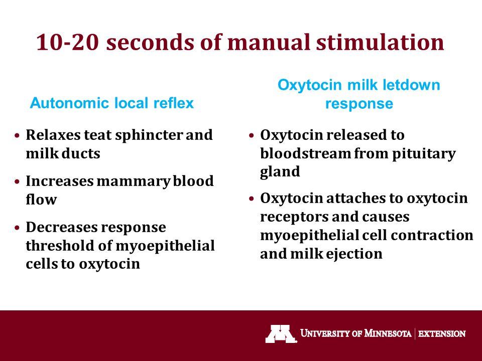 10-20 seconds of manual stimulation