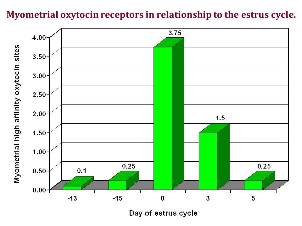 Myometrial oxytocin receptors in relationship to the estrus cycle.