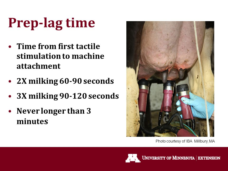 Prep-lag time Time from first tactile stimulation to machine attachment. 2X milking 60-90 seconds.