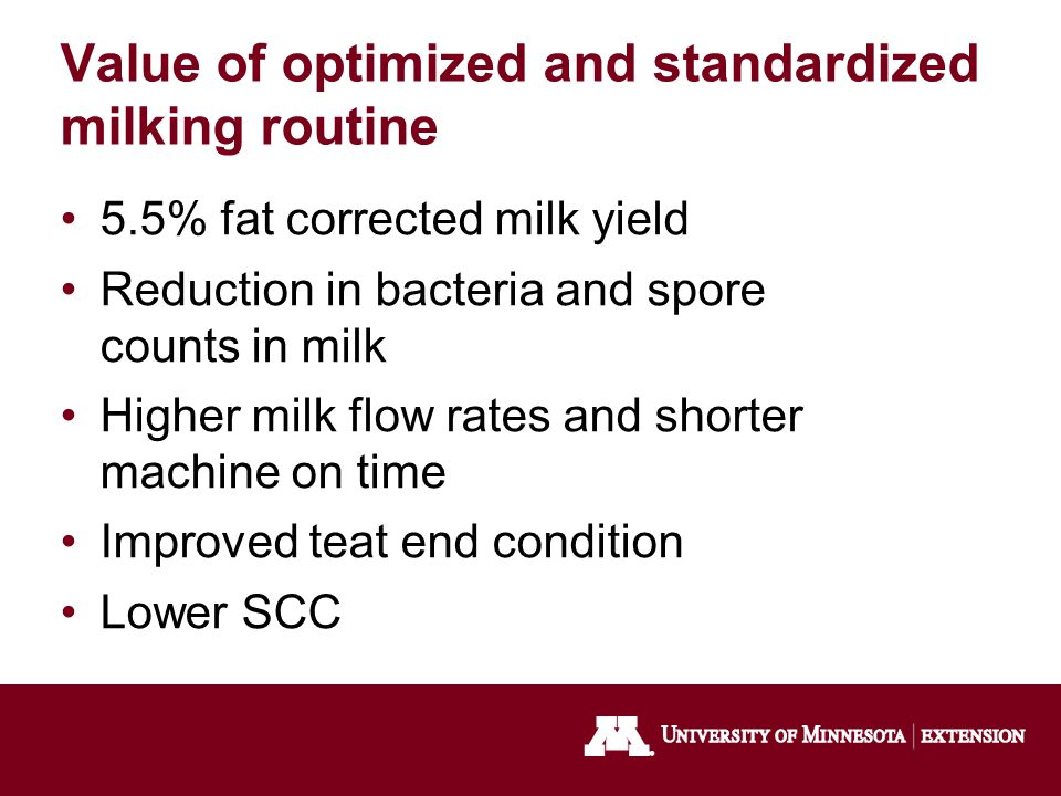 Value of optimized and standardized milking routine