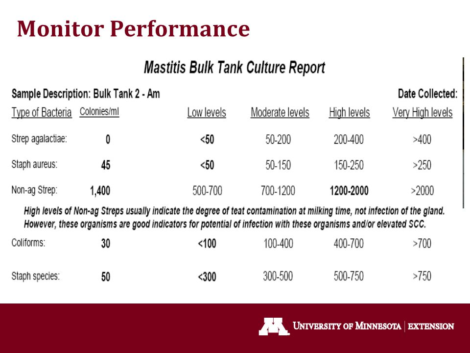 Monitor Performance Observe milk filters