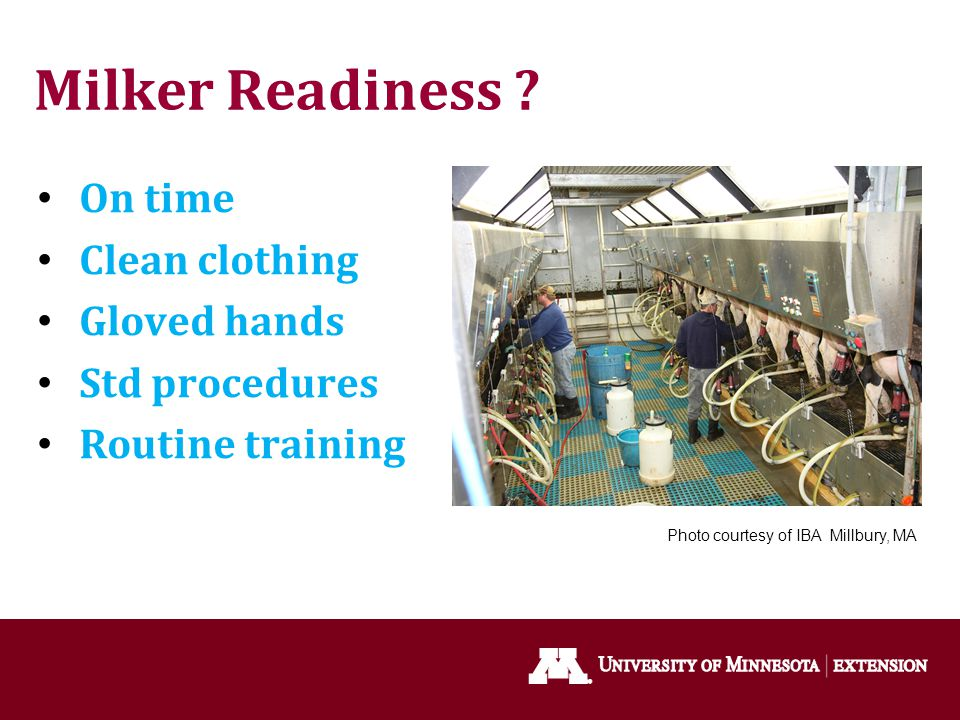 Milker Readiness On time Clean clothing Gloved hands Std procedures