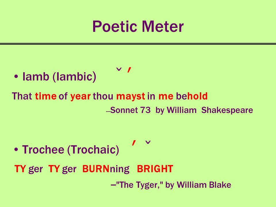 Poetic Meter Iamb (Iambic) ̌ ʹ Trochee (Trochaic) ʹ ̌
