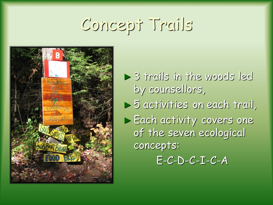 Concept Trails 3 trails in the woods led by counsellors,
