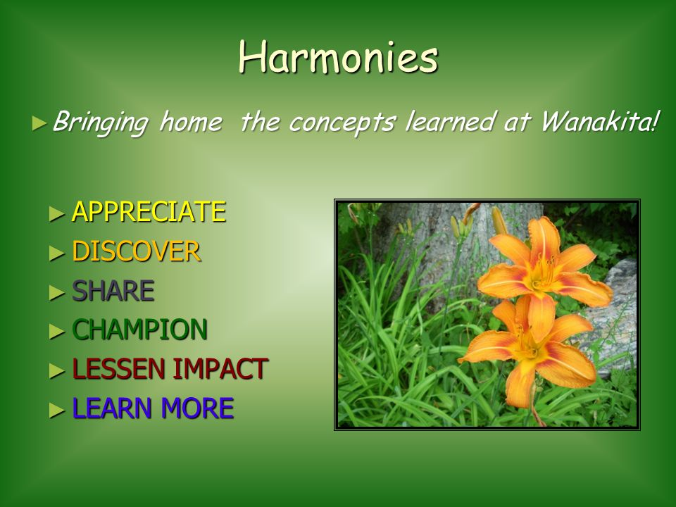 Harmonies APPRECIATE DISCOVER SHARE CHAMPION LESSEN IMPACT LEARN MORE