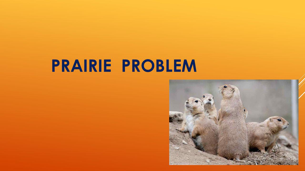PRAIRIE PROBLEM