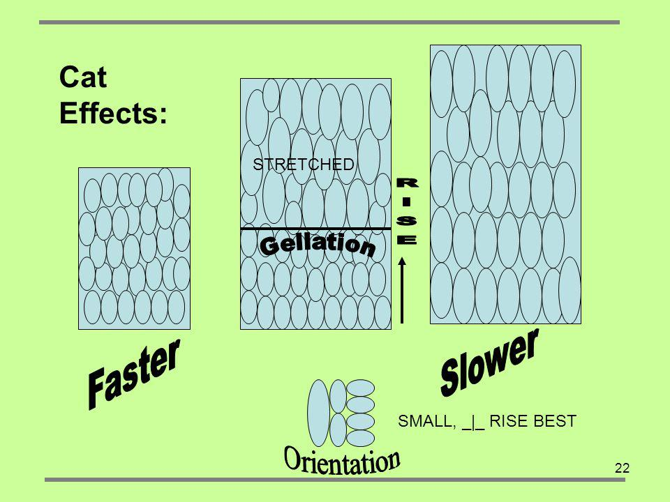 RISE Cat Effects: Slower Faster Orientation Gellation STRETCHED