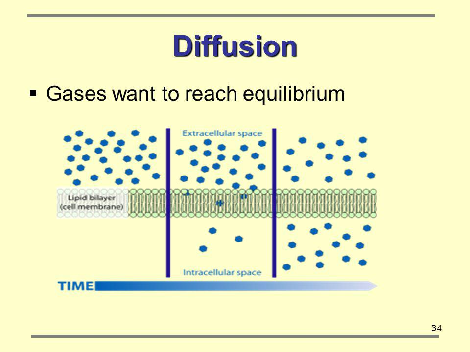 Diffusion Gases want to reach equilibrium