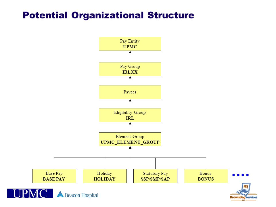 Potential Organizational Structure