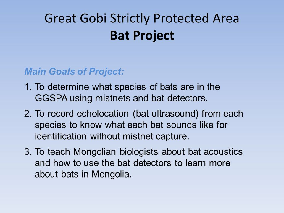 Great Gobi Strictly Protected Area Bat Project