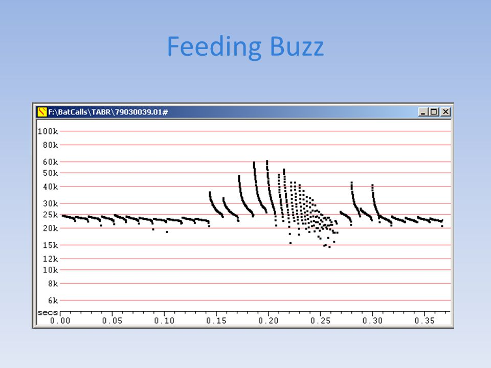 Feeding Buzz Short, steep pulses give better distance resolution because they are more sharply defined in time.