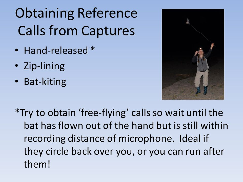 Obtaining Reference Calls from Captures
