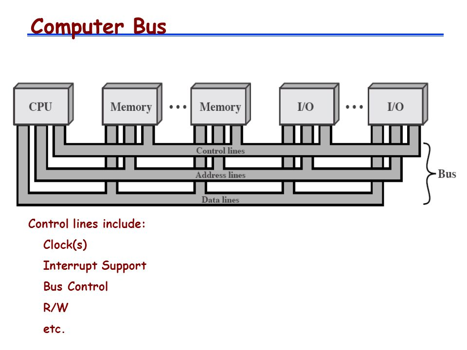 Computer Bus Control lines include: Clock(s) Interrupt Support