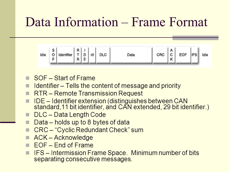 Data Information – Frame Format