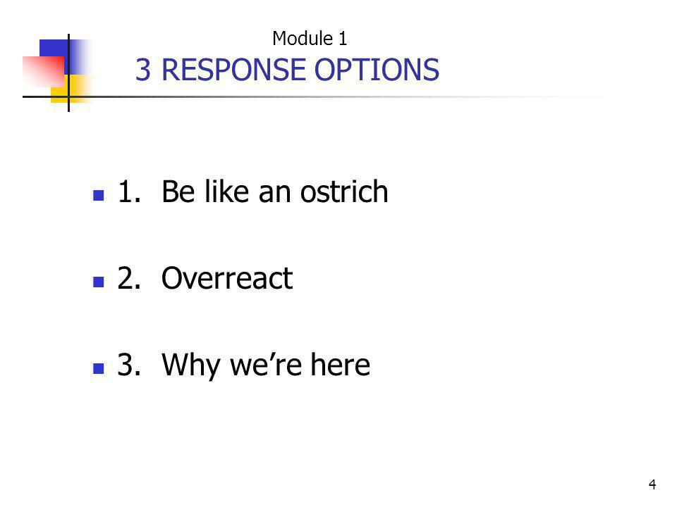 3 RESPONSE OPTIONS 1. Be like an ostrich 2. Overreact