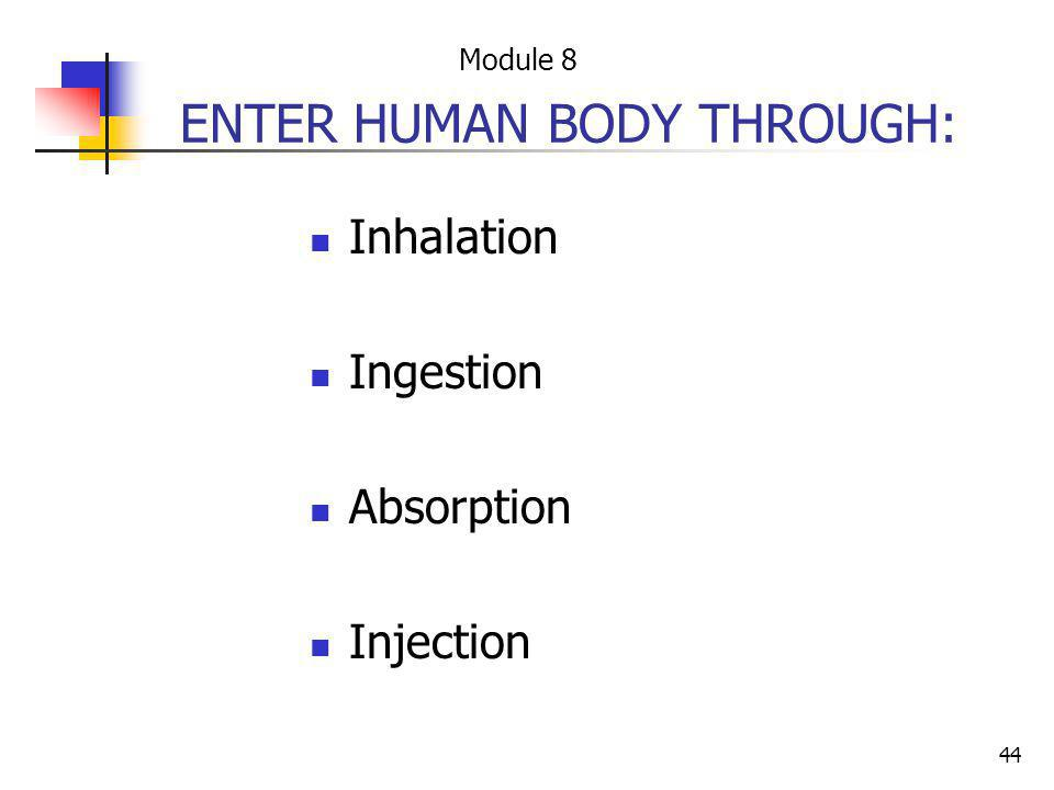 ENTER HUMAN BODY THROUGH:
