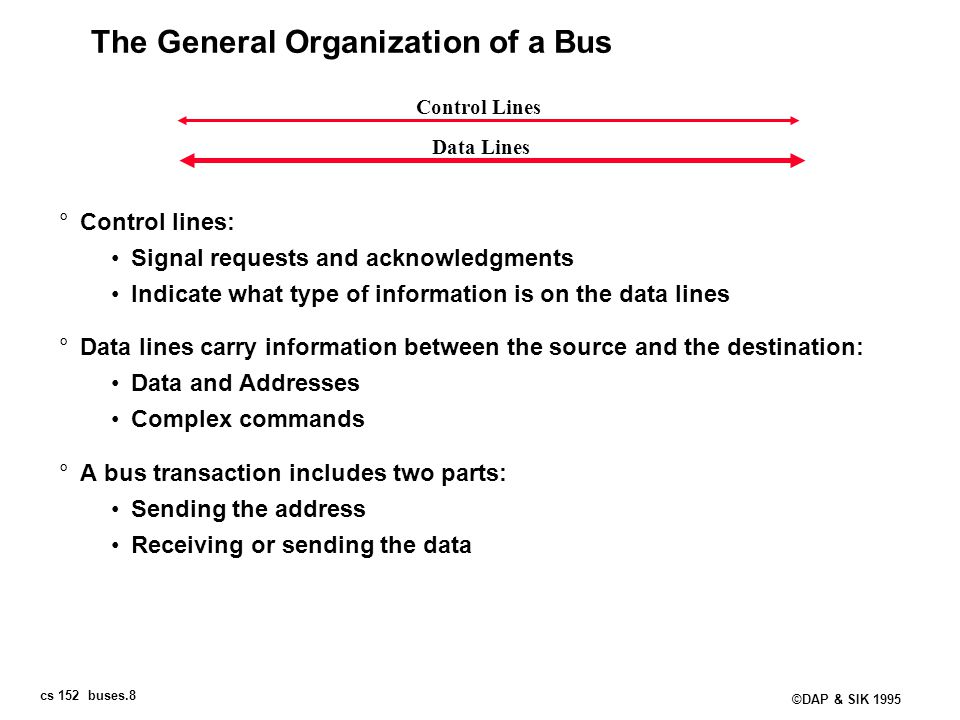 The General Organization of a Bus