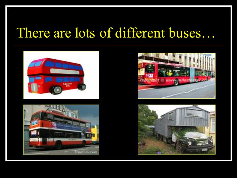 There are lots of different buses…