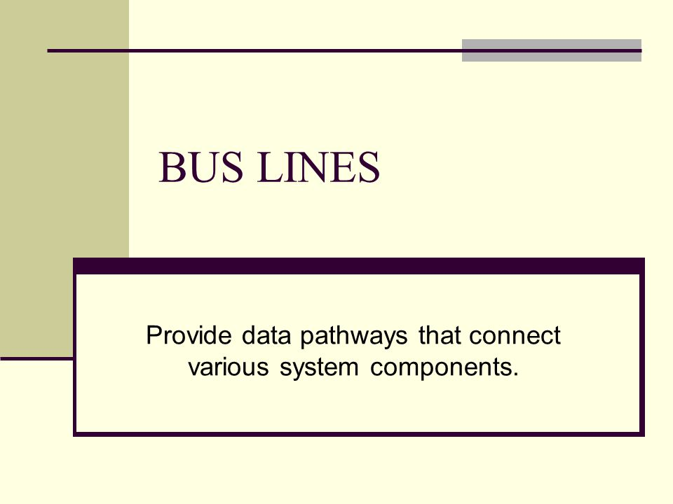 Provide data pathways that connect various system components.