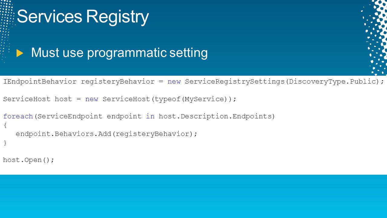 Services Registry Must use programmatic setting