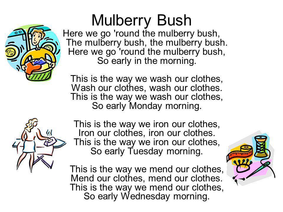 Mulberry Bush