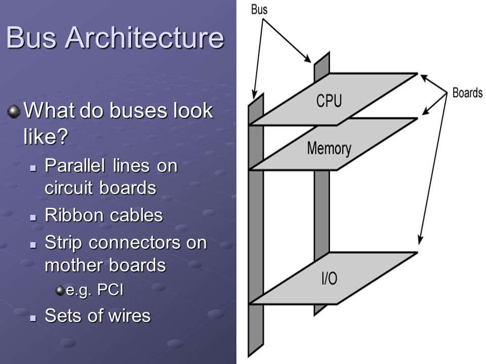 Bus Architecture What do buses look like
