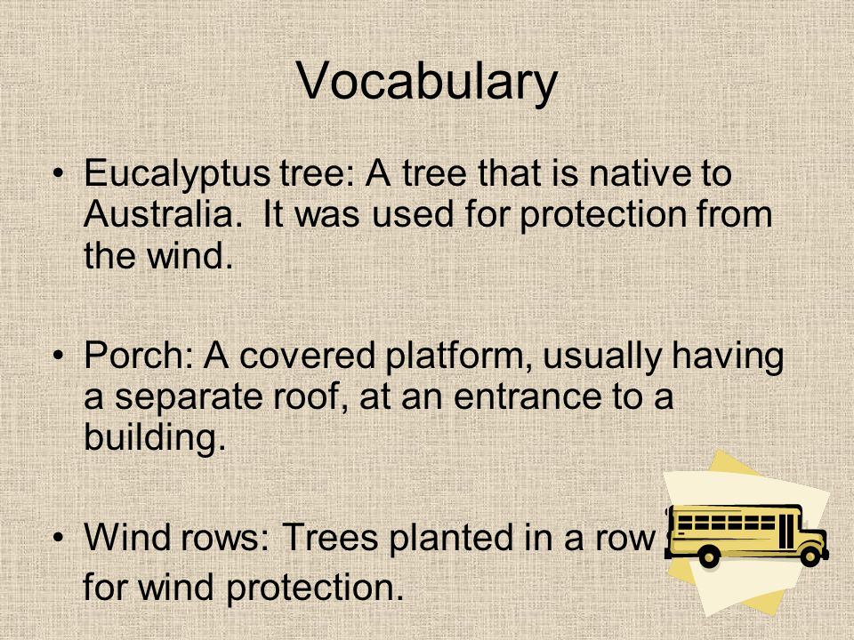 Vocabulary Eucalyptus tree: A tree that is native to Australia. It was used for protection from the wind.