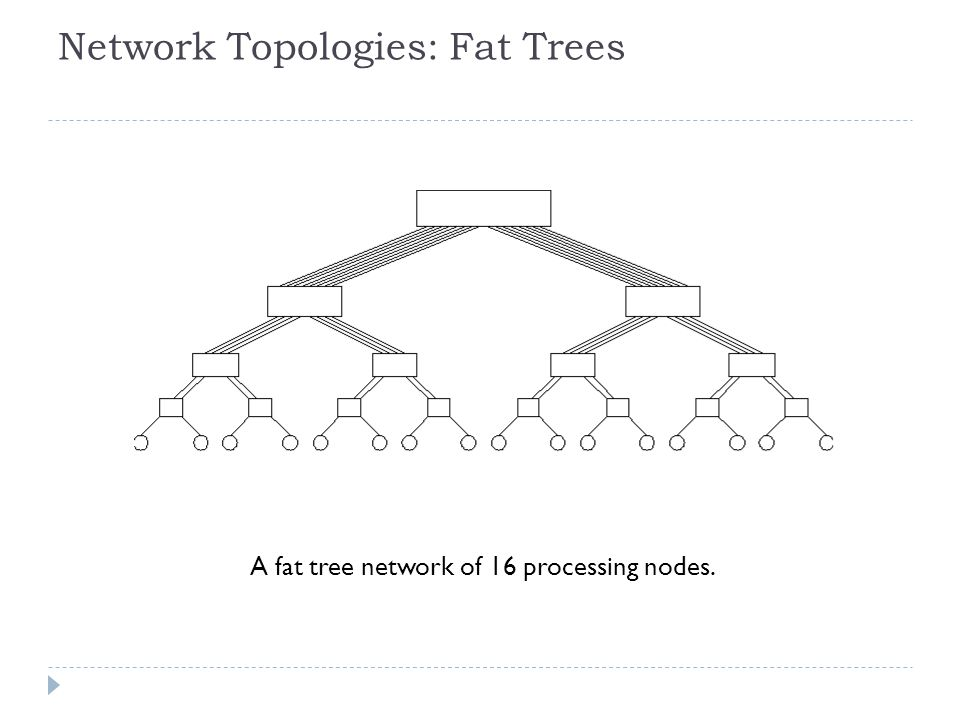 Network Topologies: Fat Trees