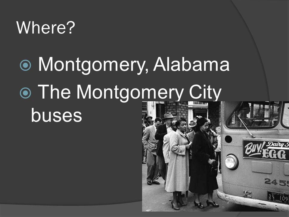 The Montgomery City buses
