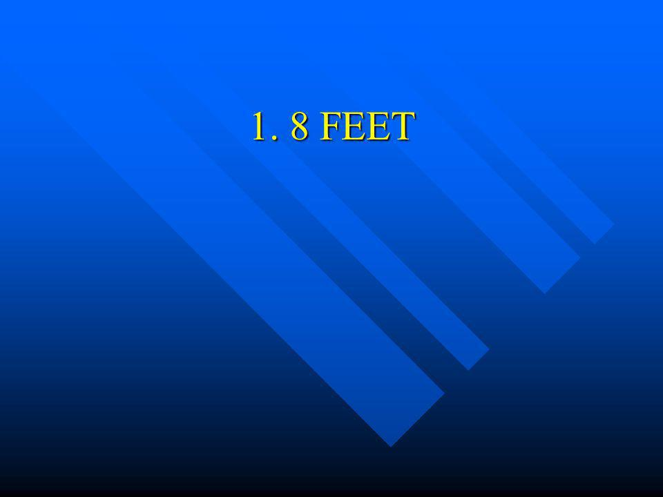 1. 8 FEET