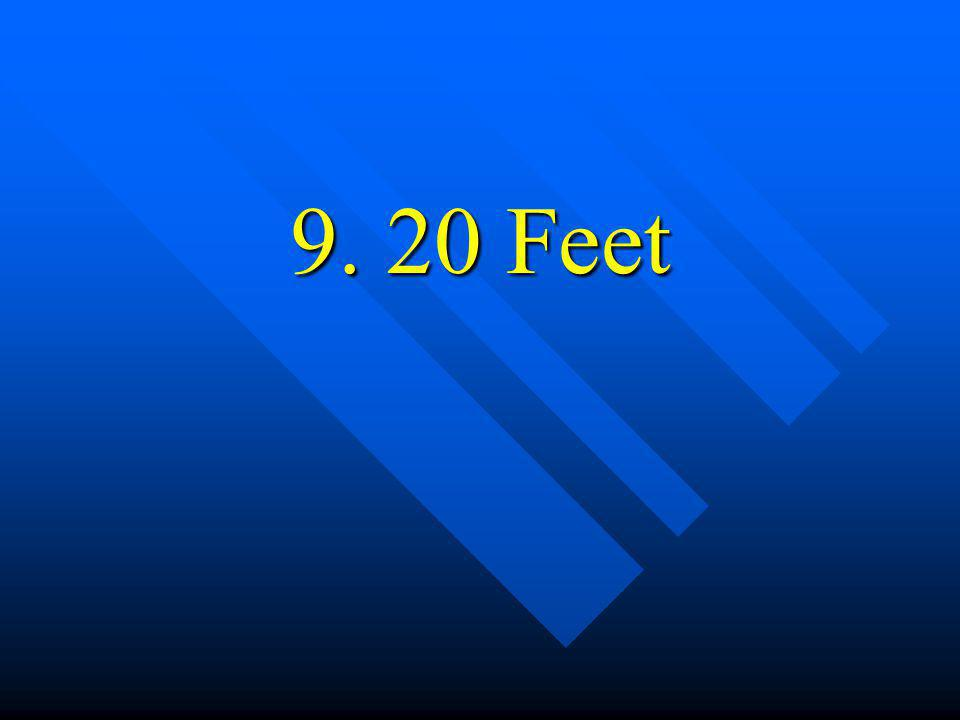 9. 20 Feet