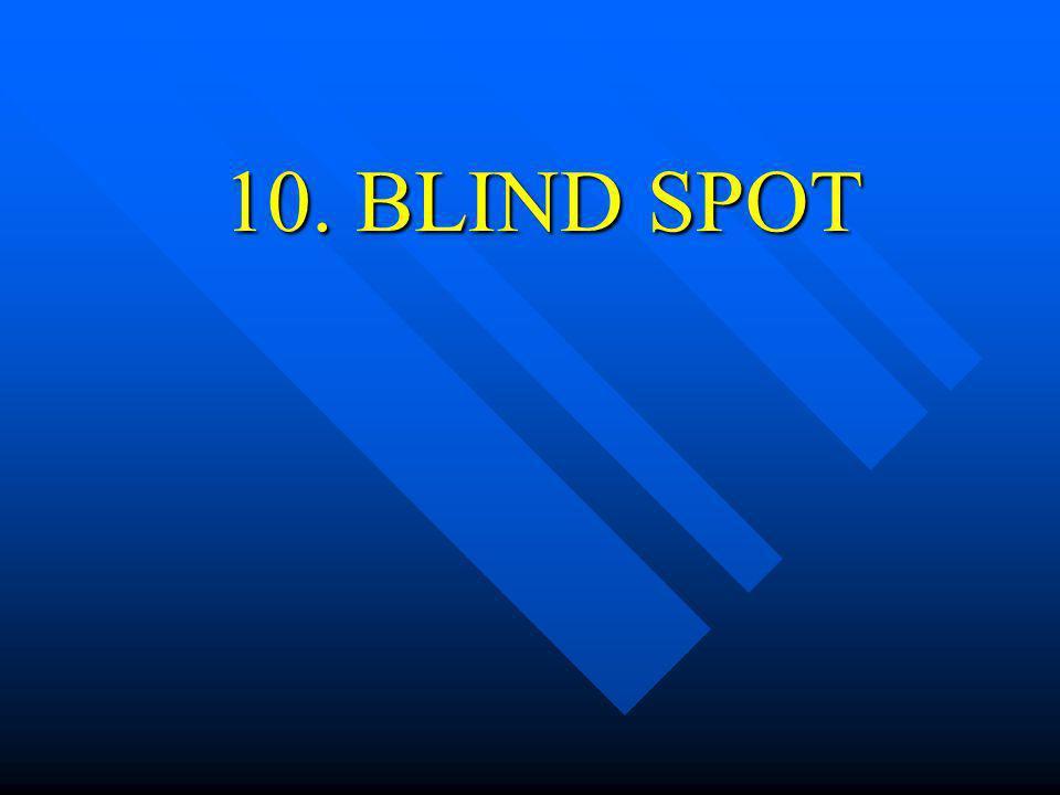 10. BLIND SPOT