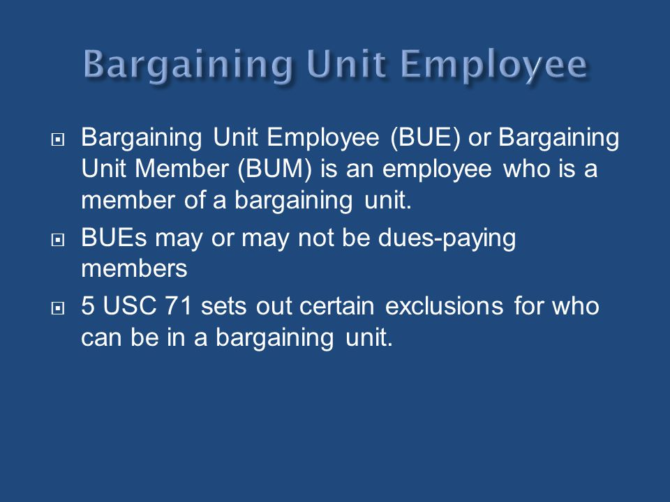 Bargaining Unit Employee