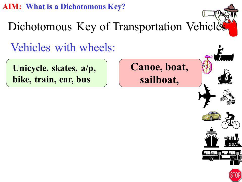 Dichotomous Key of Transportation Vehicles
