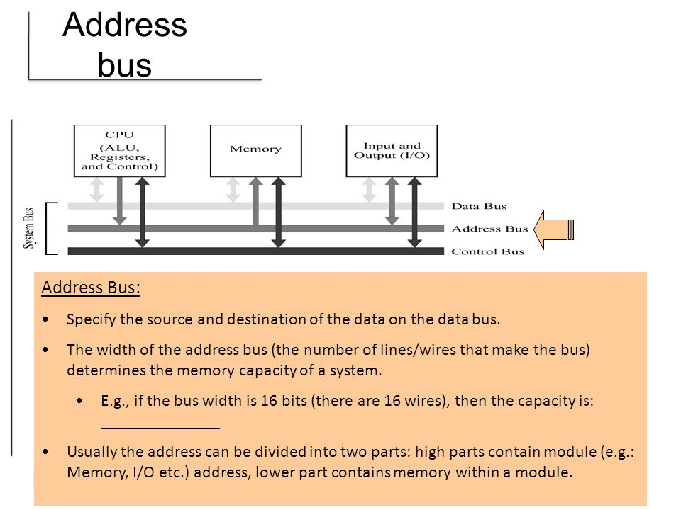 Address bus Address Bus: