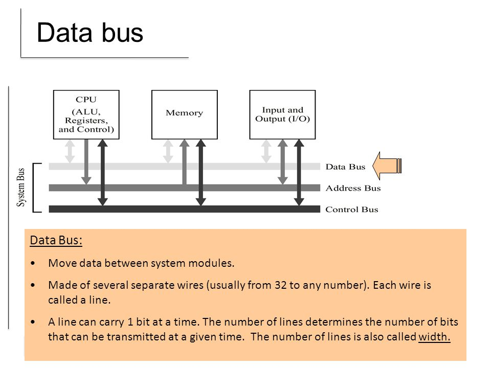 Data bus Data Bus: Move data between system modules.