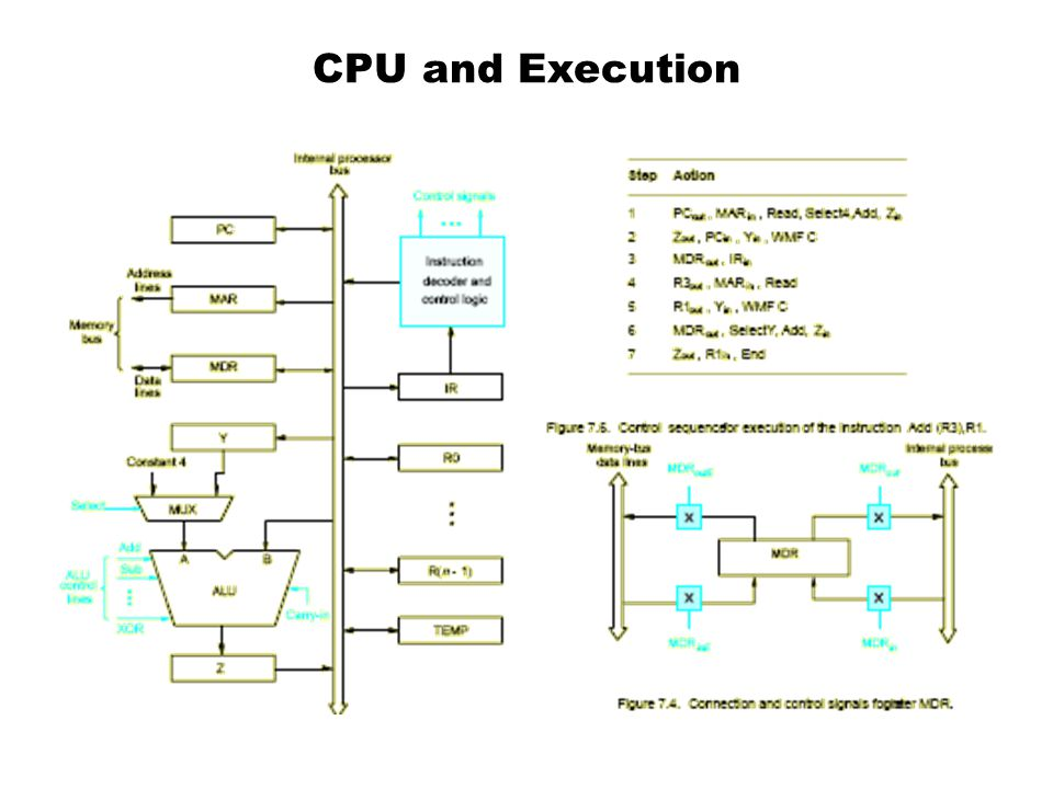 CPU and Execution