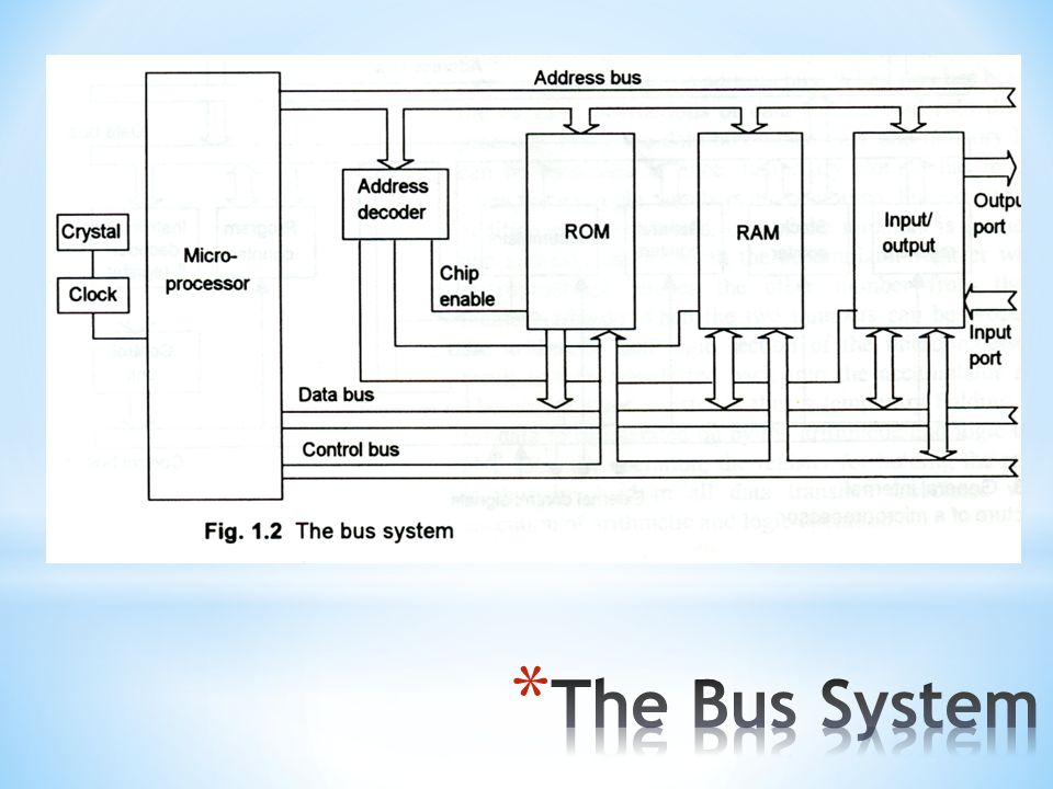 The Bus System