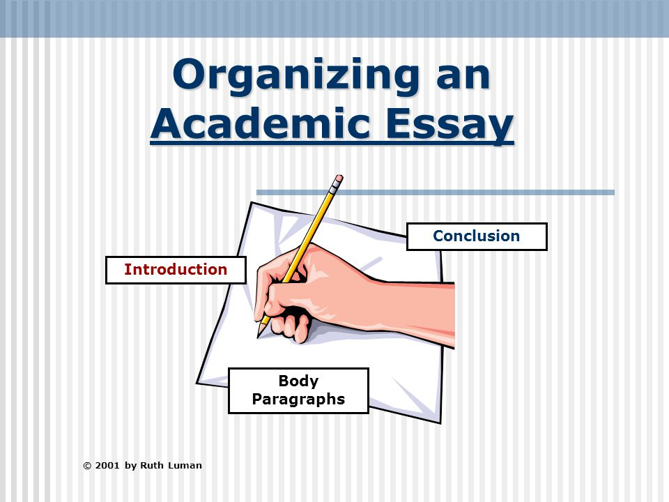 How do i organize the body paragraph of an essay