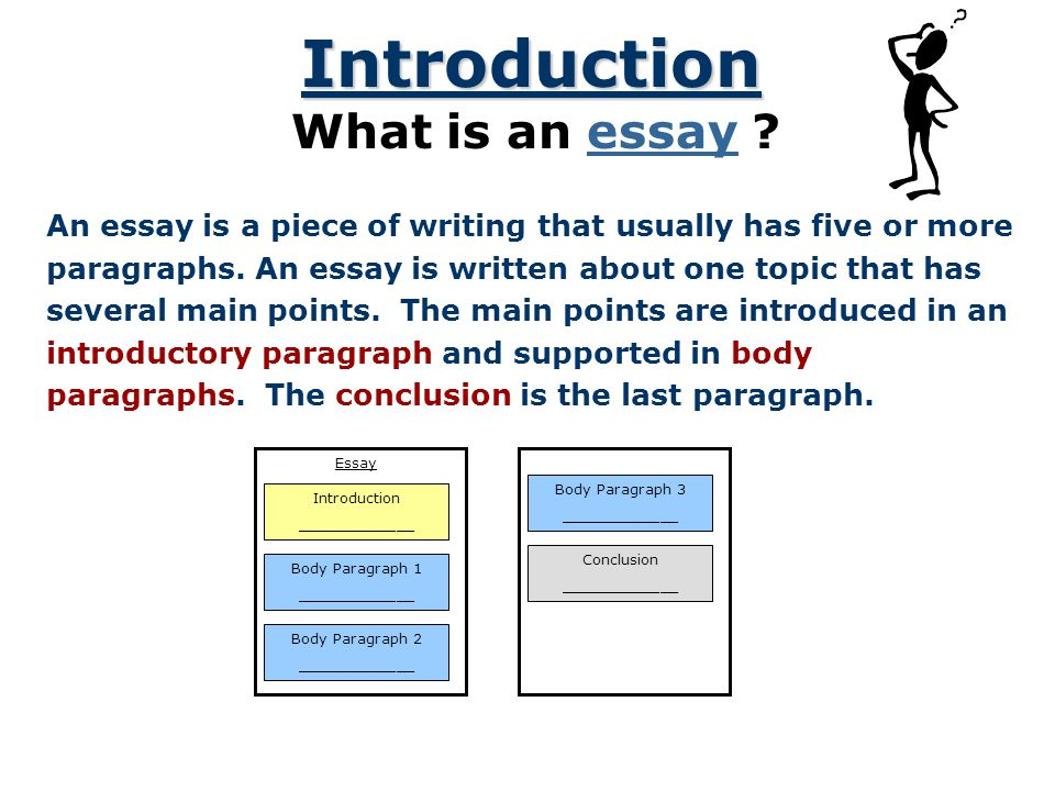 Introduction What is an essay