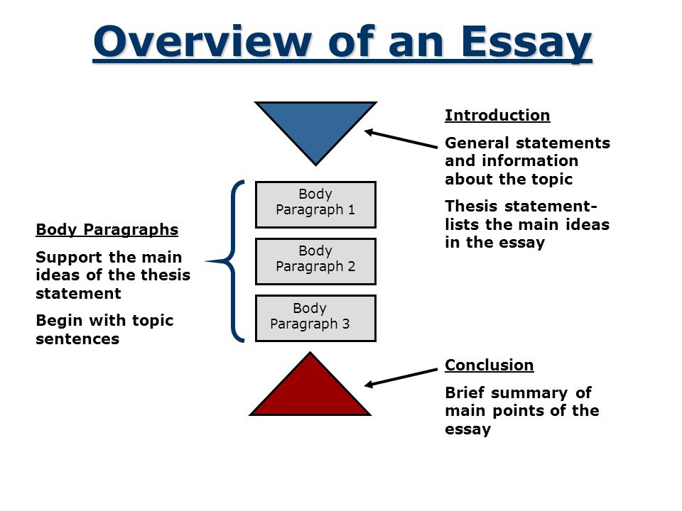 Overview of an Essay Introduction