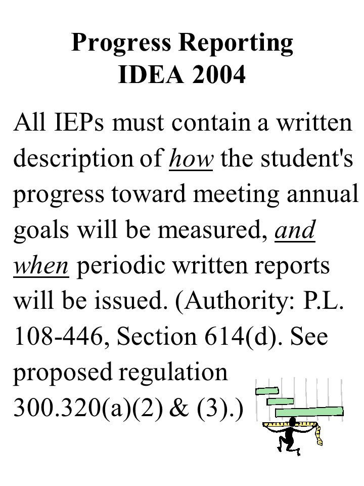 Progress Reporting IDEA 2004