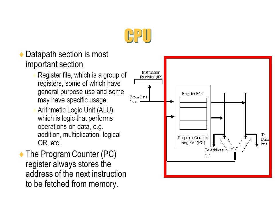CPU Datapath section is most important section