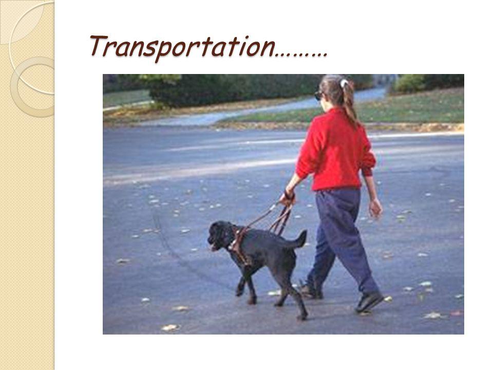 Transportation………