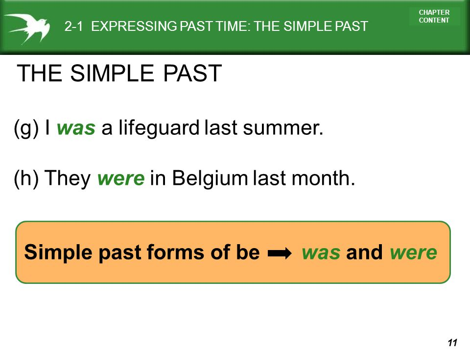 THE SIMPLE PAST (g) I was a lifeguard last summer.